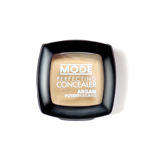 Perfecting Concealer - Light