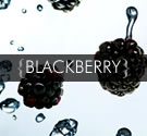 Coldpressed Blackberry