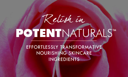 Potent Natural Ingredients